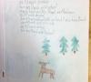 Gedicht_Sofie Kammerer_1